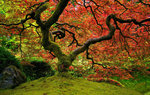 Autumn Wallpapers: Picture 423603