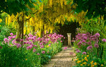 Flowers and Gardens Wallpapers: Picture 452663